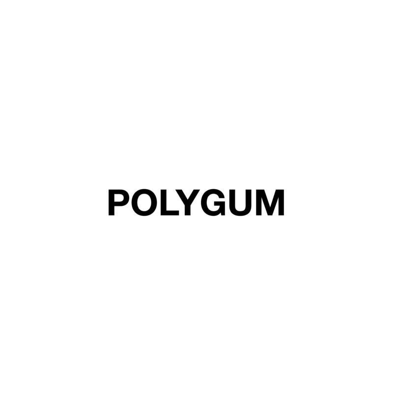 Logo Polygum