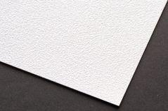Coala Wallpaper Smooth